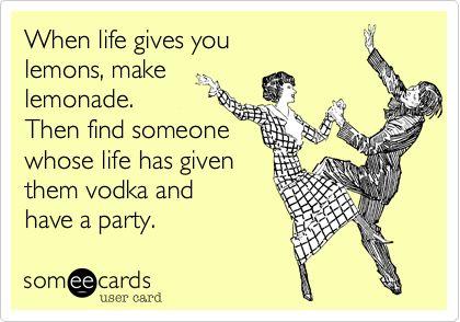 Life lemonade vodka party